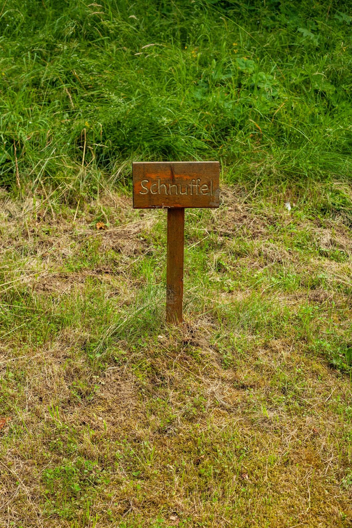 tierfriedhof 8