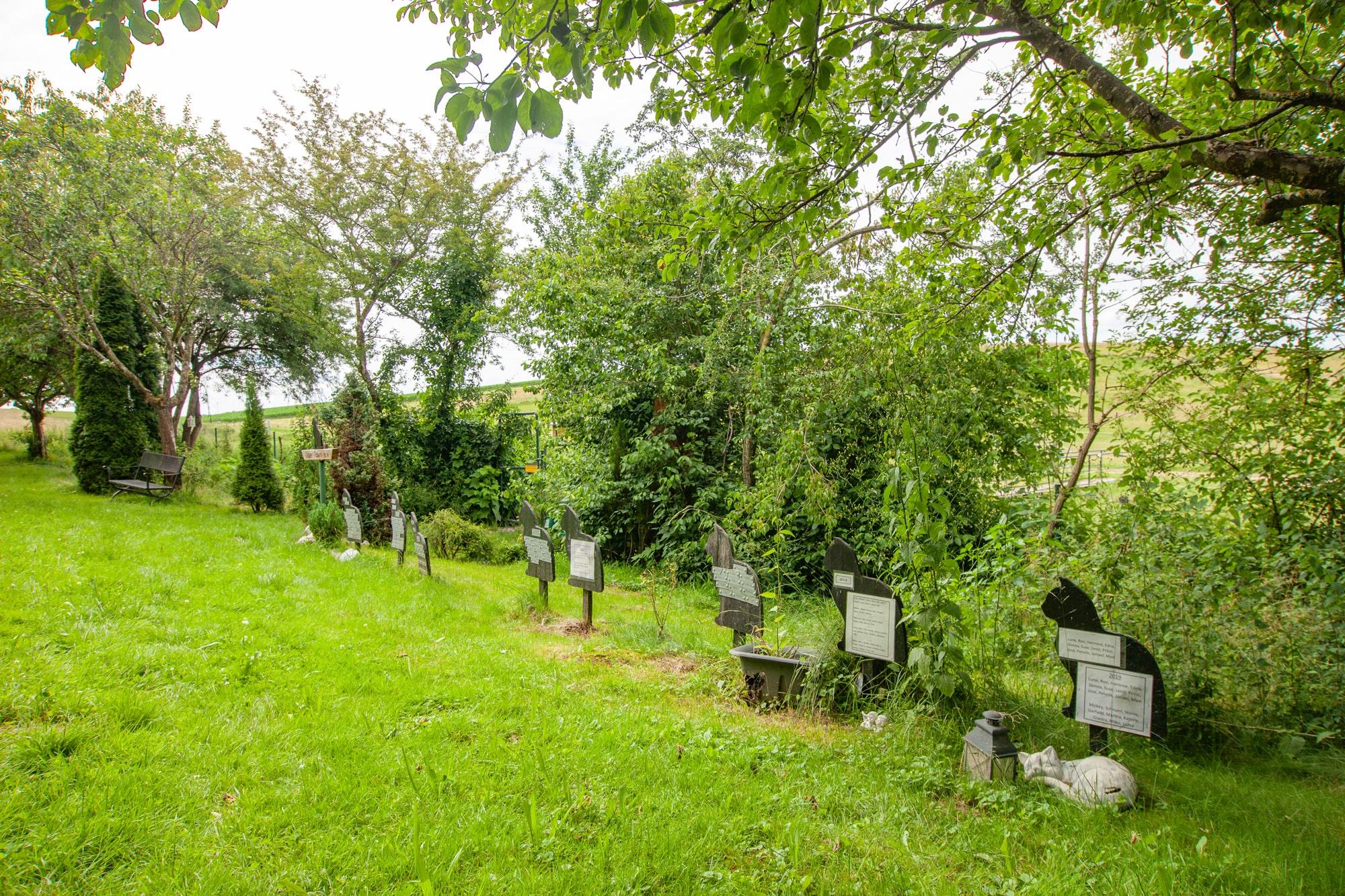 tierfriedhof 19